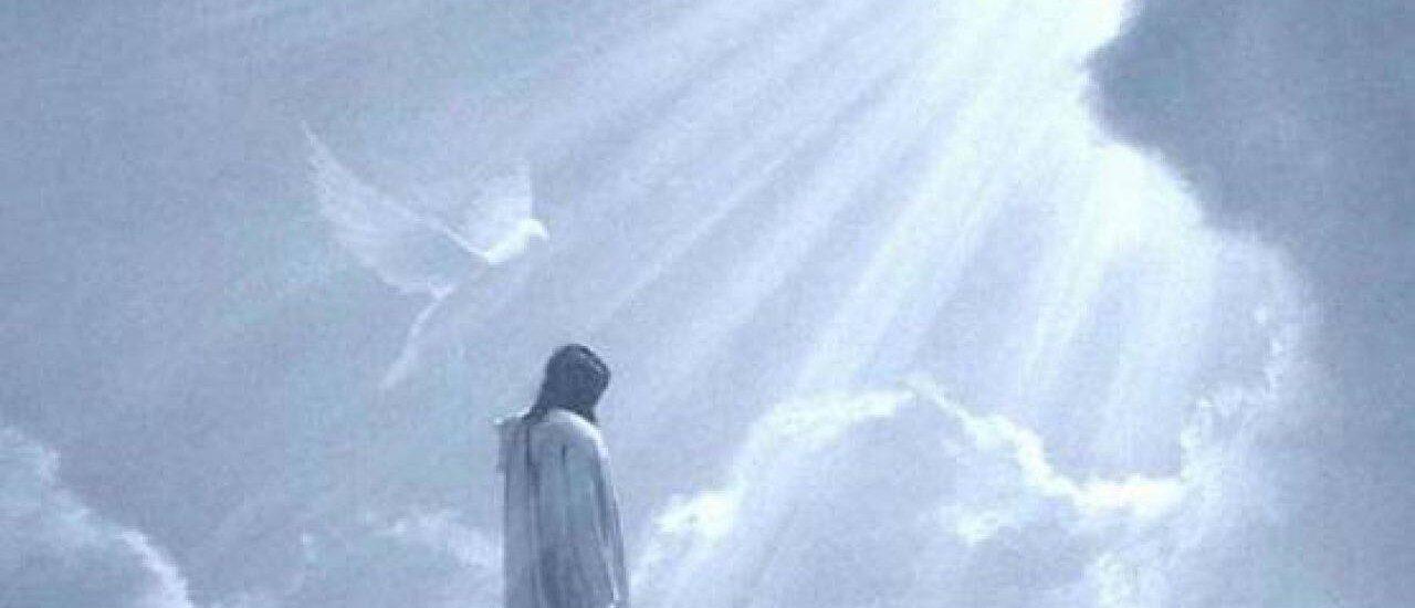 Io sono venuto nel mondo come luce.  + Dal Vangelo secondo Giovanni 12,44-50